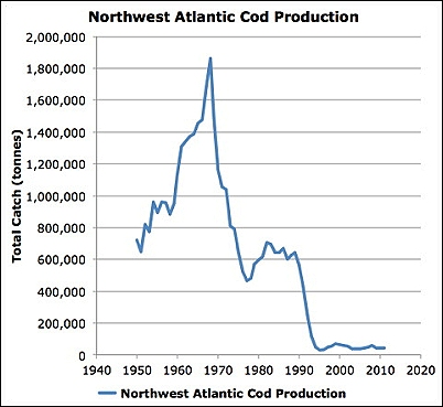 NorthwestAtlanticCodProduction
